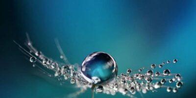 Su Falı Nedir?