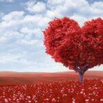 En Kolay ve En Etkili Aşk Büyüleri