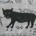 Kara Kedi Büyüsü Nedir?